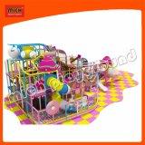 Michの幼児のプラスチックスライドの大きい屋内遊園地