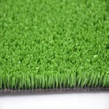 경제 Natural Tennis 및 Track Field Surface Grass (TT)