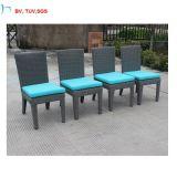 Rattan-Möbel des Entwurfs-C-2016, die Stuhl und Tisch speisen