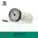 Wza-St/9-2 capillaire Thermometer met 0-120 Graden Celsius