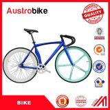 La bici di vendita calda della strada 700c che corre la signora adulta Bike Women Bike Bicicletas della bici della bici fissa dell'attrezzo della bici con Ce tassa liberamente