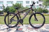26 '' درّاجة مع قابل للإقفال تعليق شوكة