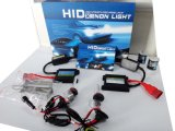 Gelijkstroom 24V 55W H11 HID Xenon Conversion Kit