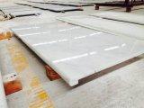 Оптовые китайские слябы Statuario Bianco востоковедные белые Guangxi белые мраморный