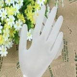 Wegwerfprüfungs-Vinyltierarzt pulverisierte Handschuhe