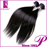 China Hair Import Silky Straight 7A Unprocessed brasileiro Virgin Hair