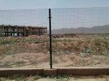 панель ячеистой сети 100*100mm покрынная PVC сваренная