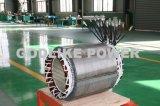 Brushless Generator de In drie stadia China van 48 KW (60kVA)