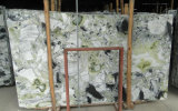 Het nieuwe Populaire Smaragdgroene Natuurlijke Marmer van de Plak van de Steen op Bevordering