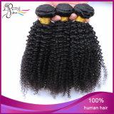 Het Onverwerkte Kroezige Krullende Menselijke Haar van 100%