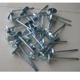 Ongles de tête de parapluie de toiture de qualité à vendre