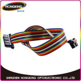 Alta qualità P10 impermeabile SMD esterno di HD che fa pubblicità alla visualizzazione di LED