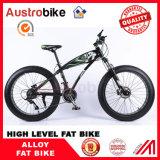 脂肪質のバイクのマウンテンバイク