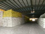 Urea chimica del fertilizzante del campione libero del nuovo prodotto (46%)