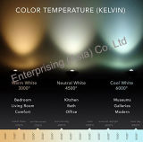 現代LEDの天井灯のペンダント灯の据え付け品24Wはライトを冷却する
