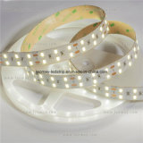 2 Ounce 60 LEDs 5730 LED Strip Light Ce UL Listé
