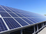 Ebst-M260 panneau solaire mono de la haute performance 260W