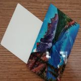 лист сублимации 1.0mm алюминиевый для печатание фотоего графиков