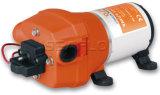 Mini pompe à eau actionnée par moteur électrique pour le rv