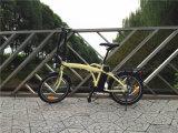 2016 bicicleta elétrica de dobramento do projeto novo 20 ''