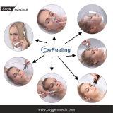Máquina do salão de beleza da beleza da mitigação da pele do cuidado de pele da terapia de oxigênio puro