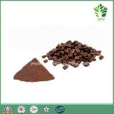 Venta caliente 100% natural cacao en polvo orgánico Precio