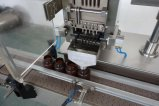 De volledige Automatische Tellende Machine van de Capsule