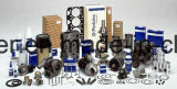 Recambios del motor del surtidor de gasolina de Bosch