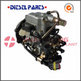Pompa Nj-Ve4/11e1800L008 di iniezione di carburante per Isuzu
