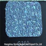 Glitter do couro de sapata do plutônio de 2017 formas