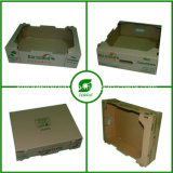 Caixa de papelão ondulado impresso para embalagem de frutas e vegetais frescos (FP020006)