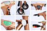 Motor plegable eléctrico de oro de la bici 48V 500W de la velocidad rápida del color
