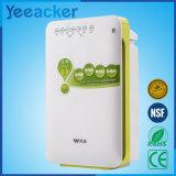 Tipo alergias de Ionizer de la instalación y del aire del purificador del aire con el filtro de aire