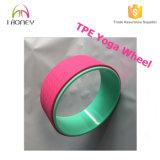 A maioria de Comfortablea da ioga de roda a mais forte &, acessório perfeito para esticar e melhorar Backbends