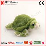 Jouet de tortue d'Aniamal bourré par approvisionnement