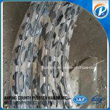 Collegare del rasoio/bobina a fisarmonica per la rete fissa di protezione dal fornitore