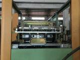 Macchina automatica dello stampaggio mediante soffiatura della bottiglia della bevanda