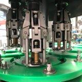 Ligne de production de boissons gazeuses complètes / usine d'embouteillage
