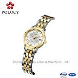 여자 Stainess 강철은 손목 시계 중국 대중적인 도매를 본다