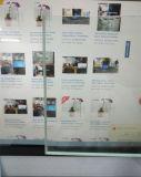 Vidro de segurança desobstruído do flutuador para a porta da cozinha/chuveiro/mobília (W-TP)