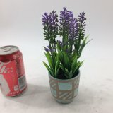 Kreisförmige keramische künstliche Pflanzen eingemacht mit Lavendel