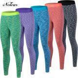 Le donne di Nn0112 Neleus mettono i pantaloni in cortocircuito delle ghette dei vestiti di yoga di usura di forma fisica