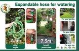 Boyau de jardin magique extensible en plastique de l'ajustage de précision de pipe de la meilleure qualité 100FT