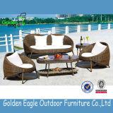 Мебель ротанга с мебелью балкона валиков напольной