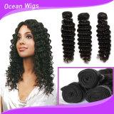 Pode ser Restyled e colorido vertendo o cabelo brasileiro livre do emaranhado livre humano