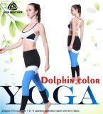 El desgaste atractivo de los deportes de la yoga de la aptitud al por mayor de las mujeres se divierte los pantalones de la yoga del sujetador