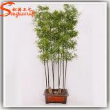 Hauptdekoration-künstlicher eingemachter Bambusplastikbaum auf Verkauf