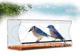 Cages d'oiseaux acryliques les plus vendus pour le jardin (YYB-8483)