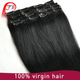 毛の拡張の多色刷りのRemyのブラジルの人間の毛髪クリップ