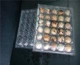 Горячая продавая поставка Китая 30 подносов яичка отверстий пластичная